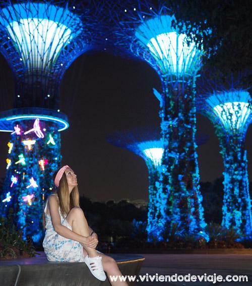 Que ver en Singapur en 3 días - Garden Raphsody en Gardens by the Bay