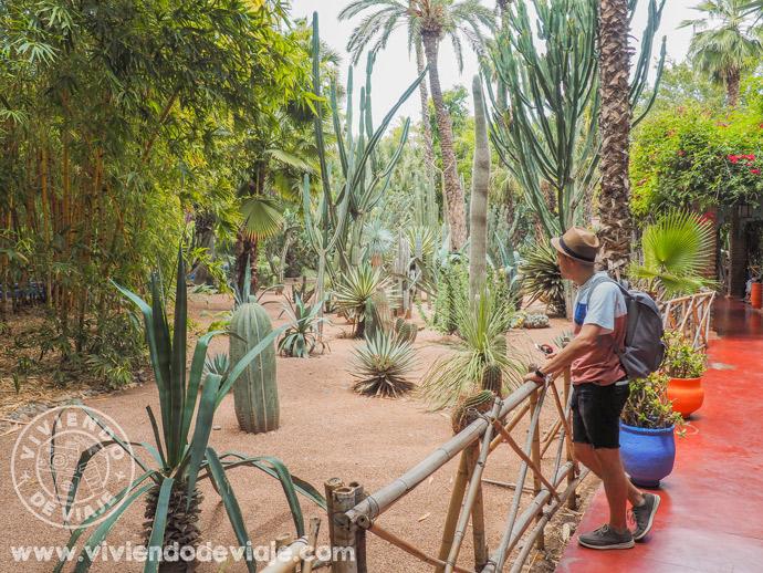 Que ver en Marrakech, Jardines Majorelle
