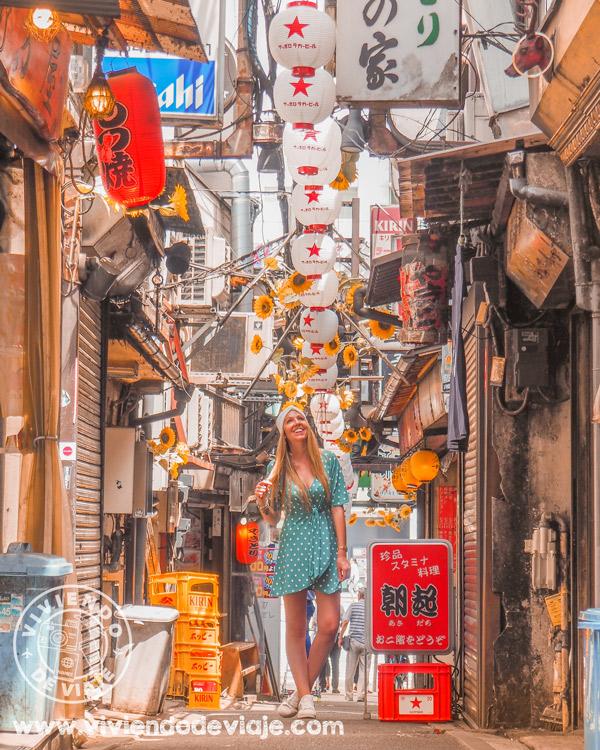 Omoide Yokocho, cosas que hacer en Tokio