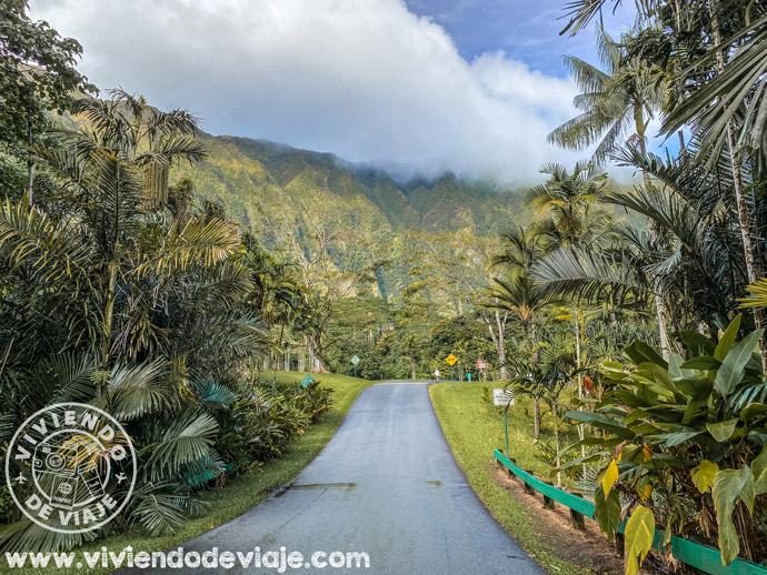 Jardín Botánico Ho'omaluhia en Oahu
