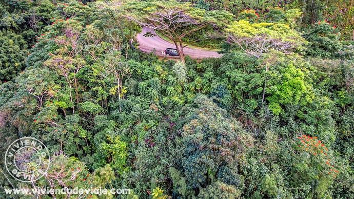 Qué ver en Maui, la carretera de Hana
