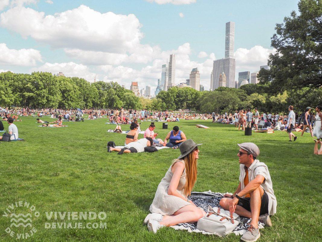 Picnic en Central Park - Nueva York en 7 días