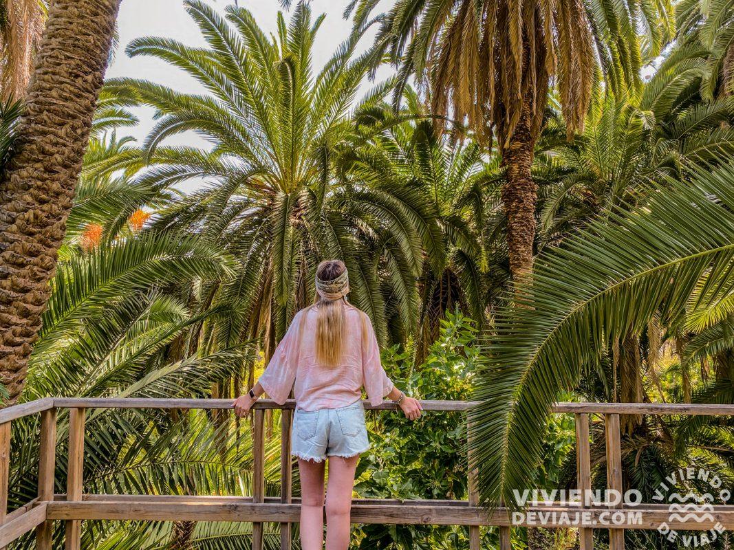 Rambla de Castro | Ruta por Tenerife en una semana