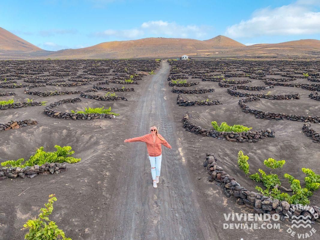 Bodegas y viñedos en Lanzarote
